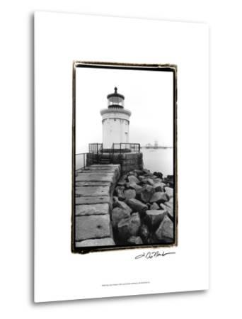 Bug Light, Portland-Laura Denardo-Metal Print