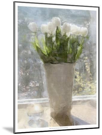 Tulips in the Sun-Noah Bay-Mounted Premium Giclee Print