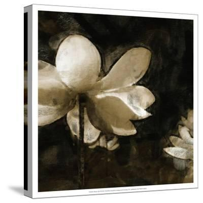 Bronze Lily II-Noah Bay-Stretched Canvas Print