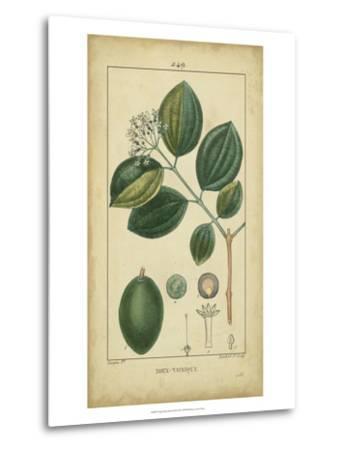 Vintage Turpin Botanical III-Turpin-Metal Print