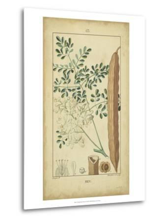 Vintage Turpin Botanical V-Turpin-Metal Print
