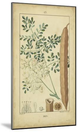 Vintage Turpin Botanical V-Turpin-Mounted Art Print