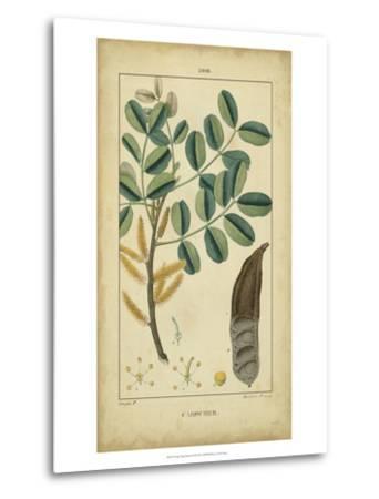 Vintage Turpin Botanical VII-Turpin-Metal Print