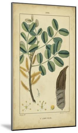 Vintage Turpin Botanical VII-Turpin-Mounted Art Print