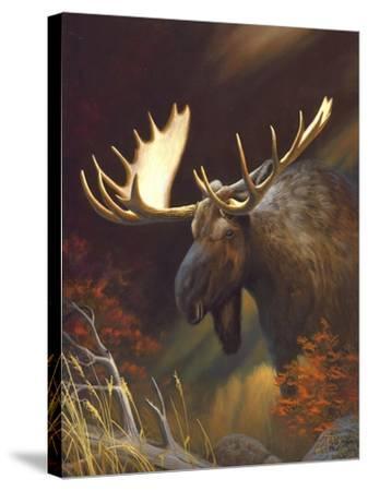 Moose Portrait-Leo Stans-Stretched Canvas Print