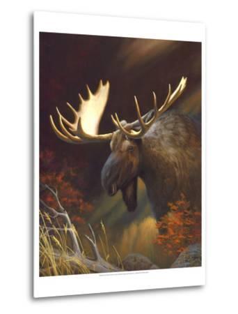 Moose Portrait-Leo Stans-Metal Print