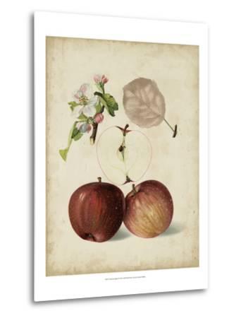 Harvest Apples I-Heinrich Pfeiffer-Metal Print