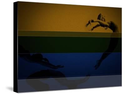 Chase-NaxArt-Stretched Canvas Print