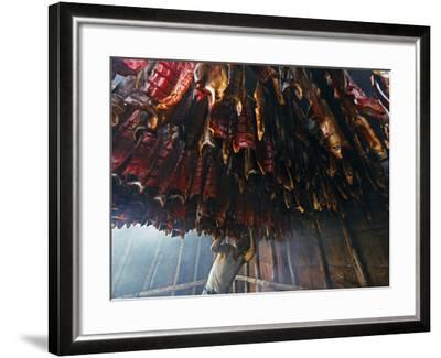 A Fisherman Checks the Salmon in His Smokehouse for Dryness-Michael Melford-Framed Photographic Print