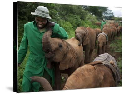 Elephant Orphans Form Intense Bonds With Their Caregivers and Vice Versa-Michael Nichols-Stretched Canvas Print