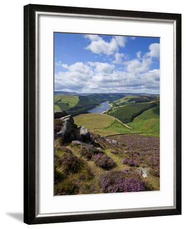 Derwent Edge, Ladybower Reservoir, and Purple Heather Moorland in Foreground, Peak District Nationa-Neale Clark-Framed Photographic Print