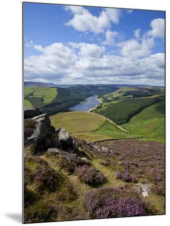 Derwent Edge, Ladybower Reservoir, and Purple Heather Moorland in Foreground, Peak District Nationa-Neale Clark-Mounted Photographic Print