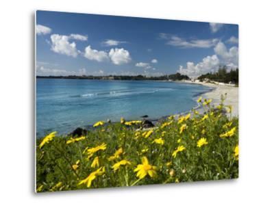 View over Beach in Spring, Fontane Bianche, Near Siracusa, Sicily, Italy, Mediterranean, Europe-Stuart Black-Metal Print