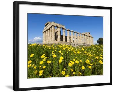 Selinus Greek Temple in Spring, Selinunte, Sicily, Italy, Europe-Stuart Black-Framed Photographic Print
