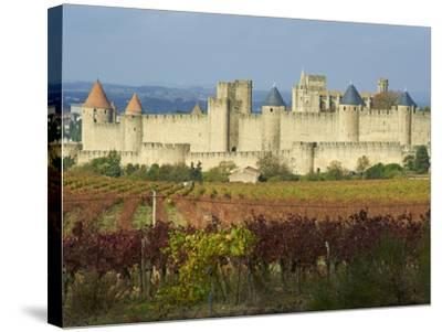 Medieval City of Carcassonne, UNESCO World Heritage Site, Aude, Languedoc-Roussillon, France, Europ-Tuul-Stretched Canvas Print