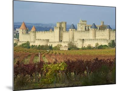 Medieval City of Carcassonne, UNESCO World Heritage Site, Aude, Languedoc-Roussillon, France, Europ-Tuul-Mounted Photographic Print