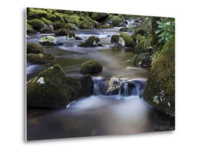 River Teign, Dartmoor National Park, Devon, England, United Kingdom, Europe-Jeremy Lightfoot-Metal Print