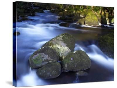 River Teign, Dartmoor National Park, Devon, England, United Kingdom, Europe-Jeremy Lightfoot-Stretched Canvas Print