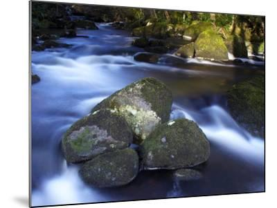 River Teign, Dartmoor National Park, Devon, England, United Kingdom, Europe-Jeremy Lightfoot-Mounted Photographic Print