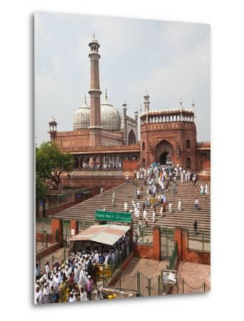 People Leaving the Jama Masjid (Friday Mosque) after the Friday Prayers, Old Delhi, Delhi, India, A-Gavin Hellier-Metal Print