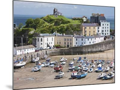 Tenby Harbour, Tenby, Pembrokeshire, Wales, United Kingdom, Europe-David Clapp-Mounted Photographic Print