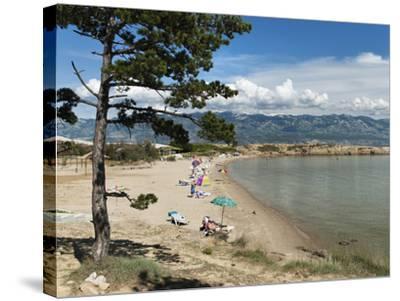 Beach on the Lopar Peninsula, Rab Island, Kvarner Gulf, Croatia, Adriatic, Europe-Stuart Black-Stretched Canvas Print
