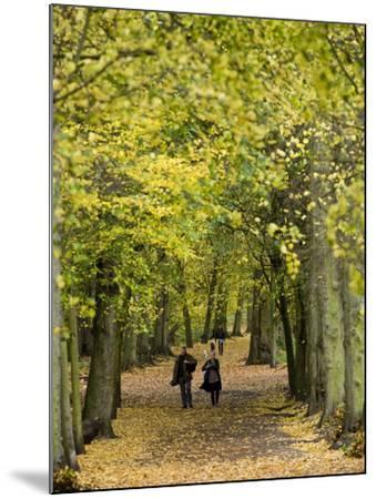 Hampstead Heath, North London, England, United Kingdom, Europe-Ben Pipe-Mounted Photographic Print