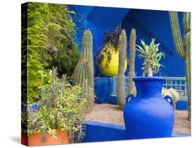 Jardin Majorelle, Marrakech, Morocco-Nico Tondini-Stretched Canvas Print