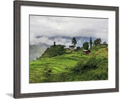 Rice Fields and Terraces Spread Out in All Areas Between the Mountains, Bhutan-Tom Norring-Framed Photographic Print