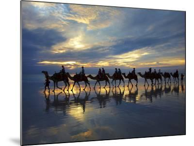 Tourist Camel Train on Cable Beach at Sunset, Broome, Kimberley Region, Western Australia-David Wall-Mounted Photographic Print