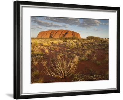 Sun Lights Sand Desert, Ayers Rock, Northern Territory, Uluru-Kata Tjuta National Park, Australia-Paul Souders-Framed Photographic Print