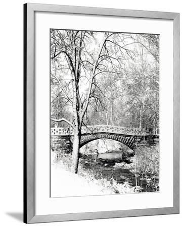 Garfield Park, Indianapolis City Park, Indiana, Usa-Anna Miller-Framed Photographic Print
