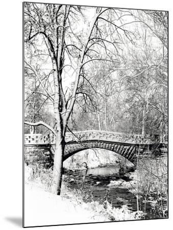 Garfield Park, Indianapolis City Park, Indiana, Usa-Anna Miller-Mounted Photographic Print