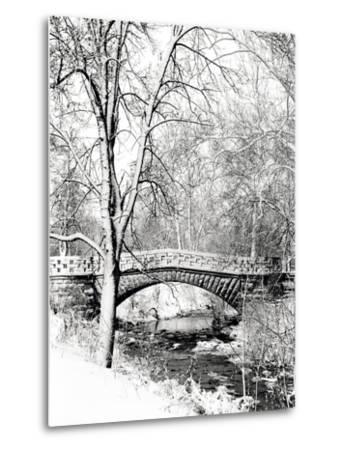 Garfield Park, Indianapolis City Park, Indiana, Usa-Anna Miller-Metal Print