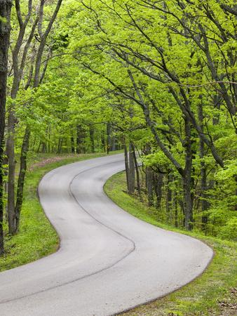Curvy Roadway under Spring Green Canopy at Brown County State Park in Indiana, Usa-Chuck Haney-Framed Photographic Print