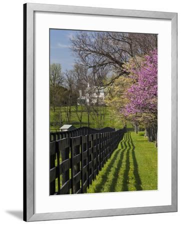 Fence and Dogwood and Redbud Trees in Early Spring, Lexington, Kentucky, Usa-Adam Jones-Framed Photographic Print