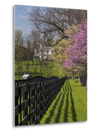 Fence and Dogwood and Redbud Trees in Early Spring, Lexington, Kentucky, Usa-Adam Jones-Metal Print