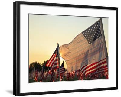 Flag of Honor and American Flags in Honor of the Ten Year Anniversary of 9/11, Salem, Oregon, Usa-Rick A^ Brown-Framed Photographic Print