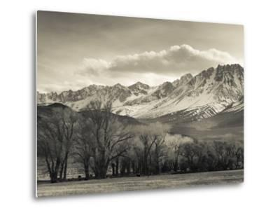 USA, California, Eastern Sierra Nevada Area, Bishop, Landscape of the Pleasant Valey-Walter Bibikow-Metal Print