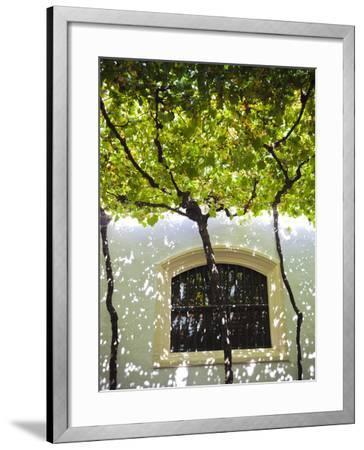 Spain, Andalucia Region, Cadiz Province, Sherry Triangle Area, Jerez De La Frontera, Bodegas Gonzal-Walter Bibikow-Framed Premium Photographic Print