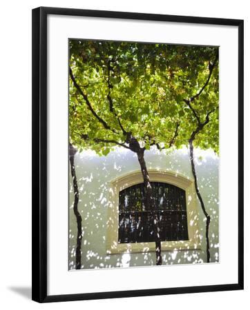 Spain, Andalucia Region, Cadiz Province, Sherry Triangle Area, Jerez De La Frontera, Bodegas Gonzal-Walter Bibikow-Framed Photographic Print