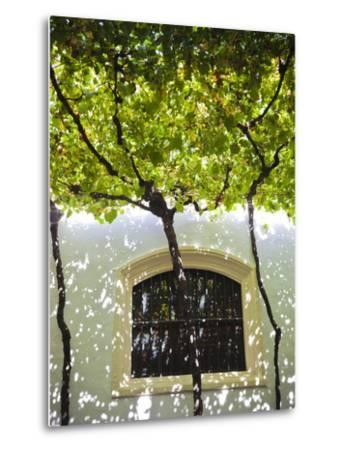 Spain, Andalucia Region, Cadiz Province, Sherry Triangle Area, Jerez De La Frontera, Bodegas Gonzal-Walter Bibikow-Metal Print