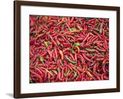 Red Chillies for Sale at Paro Open-Air Market, Red and Green Chillies are Very Important Ingredient-Nigel Pavitt-Framed Photographic Print