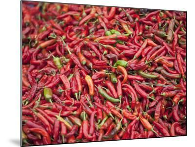 Red Chillies for Sale at Paro Open-Air Market, Red and Green Chillies are Very Important Ingredient-Nigel Pavitt-Mounted Photographic Print