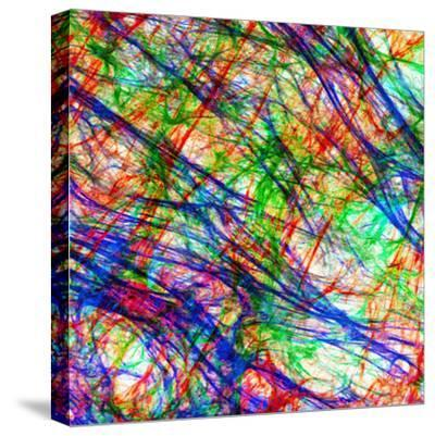 Extracellular Matrix Is the Substance of a Tissue Which Is Not a Cell-Edna Cukierman-Stretched Canvas Print