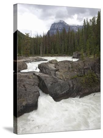 The Kicking Horse River Erodes a Natural Bridge in Limestone, Yoho National Park, Canada-Marli Miller-Stretched Canvas Print