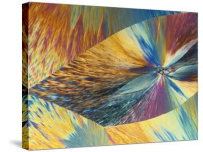 Vitamin C or Ascorbic Acid Crystals, Polarized LM-George Musil-Stretched Canvas Print