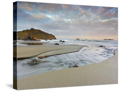 Small Stream Flowing Back into the Ocean over a Sandy Beach at Low Tide Near Eureka-Patrick Smith-Stretched Canvas Print