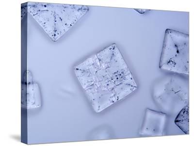 Salt Crystals, LM X25-Scientifica-Stretched Canvas Print