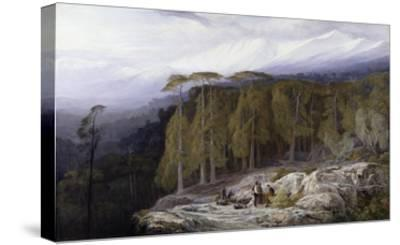 The Forest of Valdoniello, Corsica, 1869-Edward Lear-Stretched Canvas Print